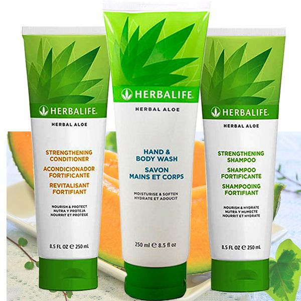 Kit Base Herbal Aloe